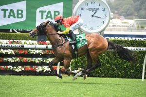 Aim, above, is the favourite for the 2020 Magic Millions 2yo Classic at the Gold Coast. Photo: Steve Hart.