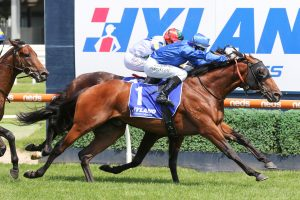 Microphone, above, finished strongly to win the Autumn Stakes at Caulfield. Photo by Ultimate Racing Photos