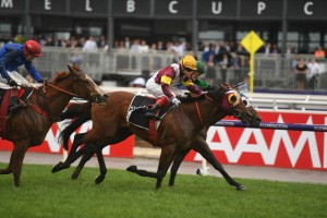 Fierce Impact, above in maroon and yellow colours, wins the Cantala Stakes at Flemington. Photo by Steve Hart.