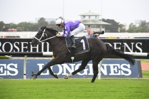 Accession, above, has drawn a wide barrier in the 2019 Inglis Millennium at Warwick Farm. Photo by Steve Hart.