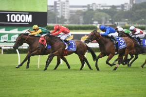 Ball Of Muscle, above in yellow and green colours, holds out Redzel to win the Challenge Stakes at Randwick. Photo by Steve Hart.
