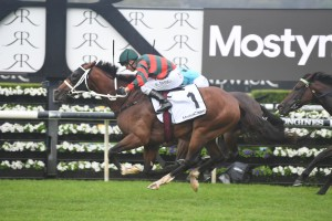 The Autumn Sun, above, produced a powerful finish to claim his fourth Group 1 win in the 2019 Randwick Guineas at Randwick. Photo by Steve Hart.