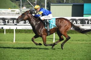 Santa Ana Lane, above, will be chasing a second win in The Goodwood at Morphettville. Photo by Steve Hart.