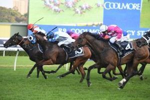 Kenedna, above in blue and white colours, slices through the pack to win the 2019 Coolmore Legacy Stakes at Randwick. Photo by Steve Hart.