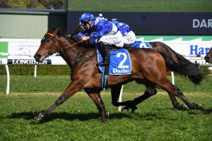 Libertini, above, scores a narrow win in the Furious Staikes at Randwick. Photo by Steve Hart.