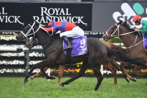 Verry Elleegant, above, scores a last stride win in the Hill Stakes at Randwick. Photo by Steve Hart.