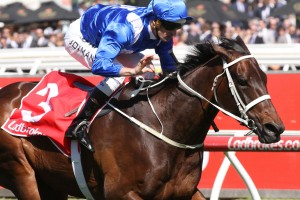 Will Winx, above, set a new track record in the Ladbrokes Cox Plate at The Valley, Photo by Ultimate Racing Photos.
