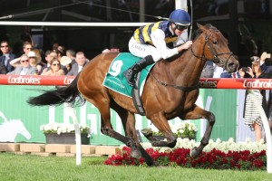 Aloisia, above, scored an impressive win in the Vase at The Valley. Photo by Ultimate Racing Photos.