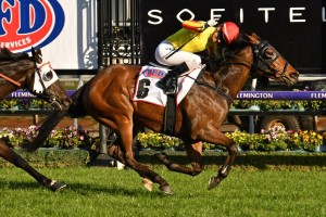 Gatting, above, scores a boilover win in the 2019 Makybe Diva Stakes at Flemington. Photo by Ultimate Racing Photos.