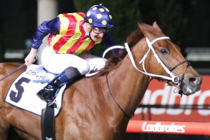 Moir Stakes winner Nature Strip, above, is among the first acceptances for the 2019 Manikato Stakes at The Valley. Photo by Ultimate Racing Photos.